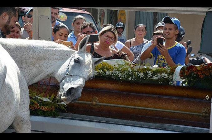 愛する飼い主を事故で亡くした馬が葬儀に参列 馬が見せた行動に人々が涙する