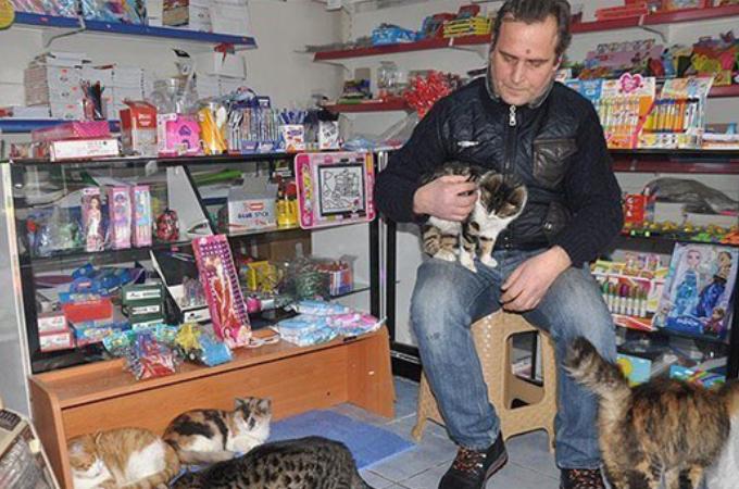 悪天候の日は店を解放し猫たちの避難所にする文房具店の店主。さらに自分の首を絞め兼ねないある行動をとる
