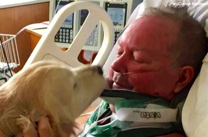 雪の中、薄着で倒れた飼い主を20時間もの温め励まし続けた犬。そのおかげで奇跡的に一命を取り留める