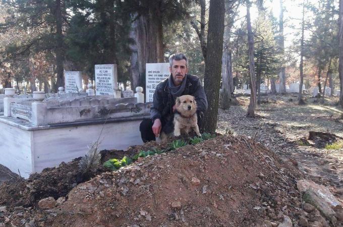 最愛の飼い主さんを亡くが葬儀に参列した犬。その後、毎日居なくなる犬の後をつけてわかった行き先とは