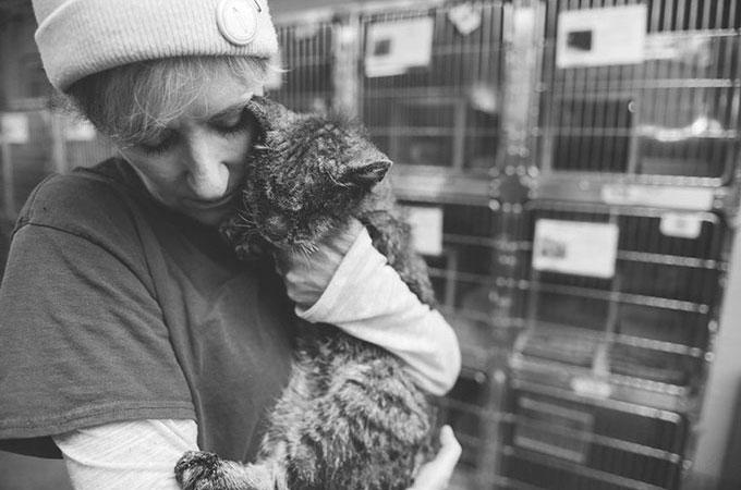 多くの理由から人間が触れたり近づこうとはしない悲しい運命の猫