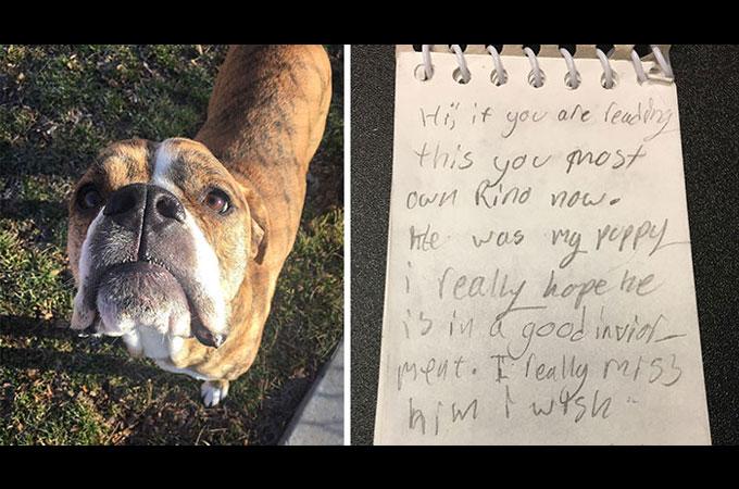 一度は引き取られた保護犬が再びシェルターへ 飼い主だった少女が残したノートに記された内容に胸が熱くるなる