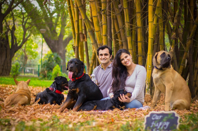 妊娠をきっかけに家族である「5匹の愛犬を手放すべき」と周りから言われる女性。そして彼女のとった行動とは