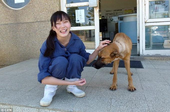 動物保護施設で働く女性が、目の前で安楽死されていく動物たちに耐えかねて迎えた悲しい最期