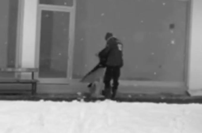 野良の子犬にあることをした男性。その一部始終が防犯カメラに映っていたことから、素晴らしいと表彰される