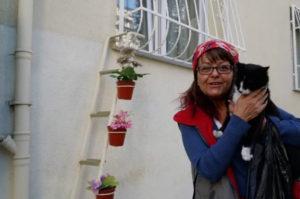 寒い冬の野良猫の生活を心配した女性が「避難所としてうちを使って」と野良猫を自宅に招き入れる
