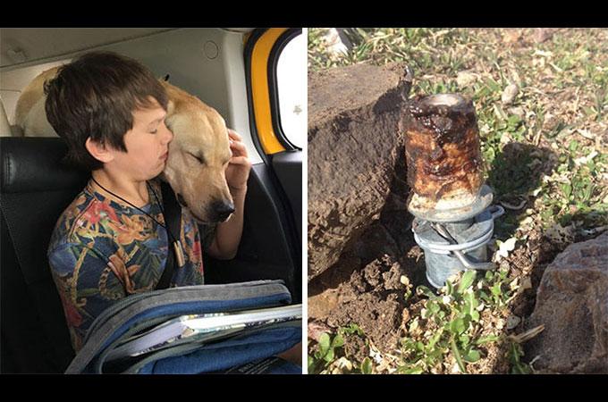 アメリカ政府が住民に通知なく設置したトラップによって1匹の犬が亡くなった悲しい事故