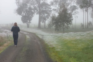 冬のオーストラリアに突然現れた真っ白い景色。雪や霜でもない、その正体とは!