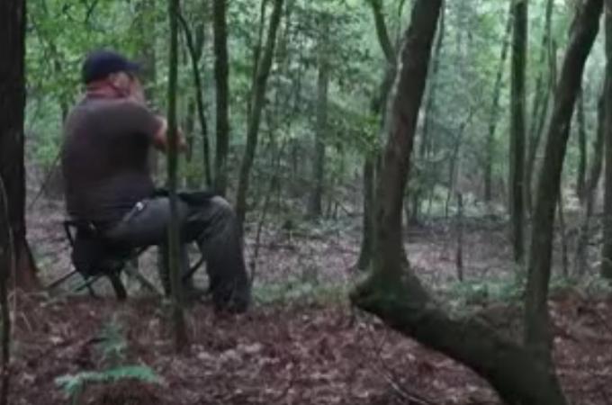 森の中でコヨーテの遠吠えの真似をした男性。その直後に物静かだった森が一瞬で恐怖の森へと変わる