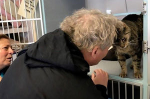 行方不明からおよそ2年半 愛猫をアニマルシェルターのFacebookで発見し再会を果たす