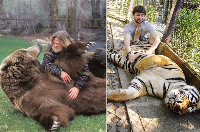 完全に人間に気を許し、お腹を「なでなで」されてご機嫌の動物たちの画像20枚