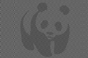 10人中9人しか見えない画像!あなたはこの中に「ある動物」が隠れているのは分かりますか?