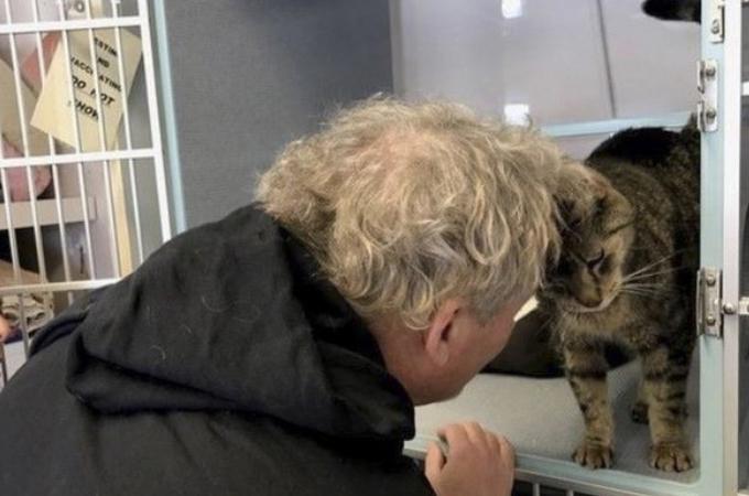 2年半も行方不明になっていた愛猫にそっくりな猫をSNSで発見した女性。問い合わせ、無事に再会を果たす