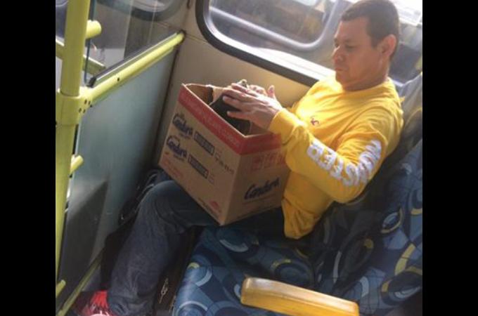 箱を手にした挙動不審な男性。その箱の中身が明らかになると、周囲は不安から開放され賞賛に包まれる