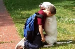 片腕の犬が家族とのハグ。両腕はないものの、相手をまるで包み込むような姿に目頭が熱くなる。