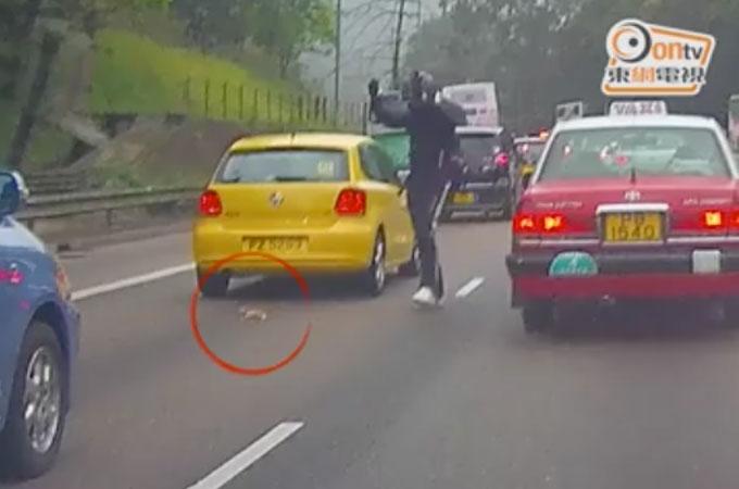 高速道路の真ん中でうずくまる子猫を救うため自らの命を危険にさらしながら救助に向かった男性