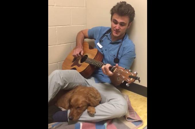 動物病院で手術を控え怖がる犬のために、ギターを取り出し歌を歌う獣医師。その結果、犬も落ち着きを取り戻す