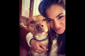 愛犬の最高の笑顔を写真に収めるために開発された「Pooch Selfie」。これで愛犬の笑顔も簡単撮影!?