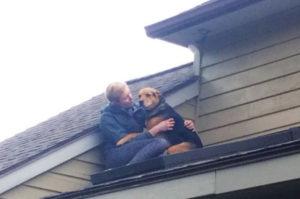 猫を追いかけ屋根に登った犬。我に返り周りを見渡すと想像以上に高い場所。そこを飼い主さんに発見され救出される!