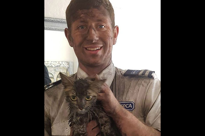 シェルターから引き取られ、怯えて隠れた煙突の中で4日間過ごした猫を無事救出