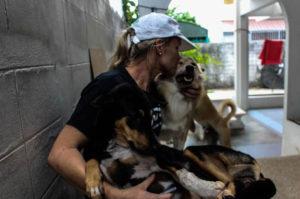 行くあてのないホームレス犬たちを救うため自らの人生を捧げた女性の行動力