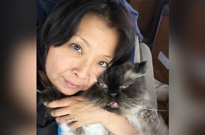 引っ越しが理由で捨てられ処分させられる寸前だった13歳の高齢猫が出会った素敵な家族とは。