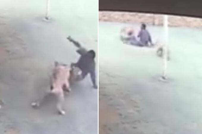 ある民家に泥棒に入った男。番犬たちに追い返される映像が監視カメラによって撮影される!