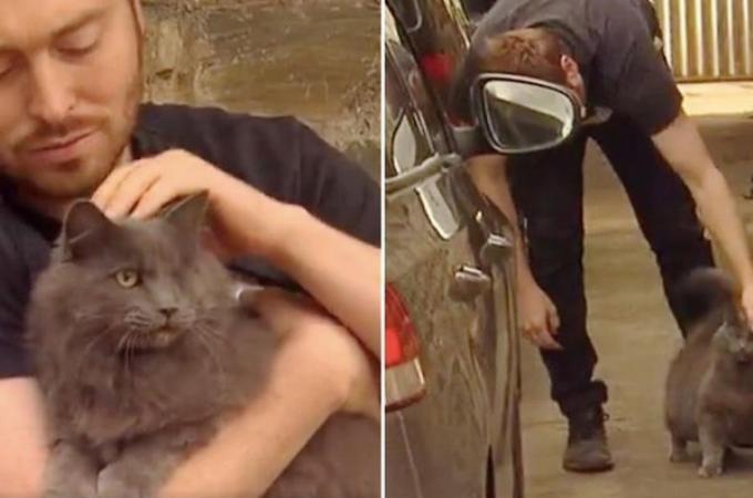 片目の野良猫を保護した男性。ある日、命の危険もあった男性に、その猫がした恩返しとは!