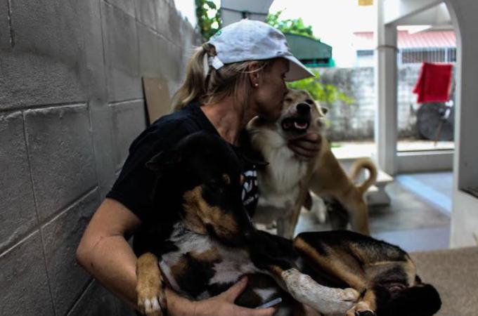 タイの劣悪なほど施設から犬たちを救う女性。「できる限りの犬たちを助けたい」と奮闘している姿に胸が熱くなる