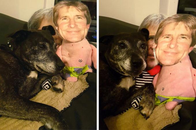 パパのことが大好きな犬がパパと離れ離れになったことで鬱に!家族が考えたアイディアで元気を取り戻す!