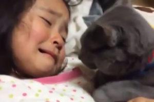 脚をぶつけて痛がる女の子に寄り添う猫。まるで「大丈夫?」と寄り添うその姿に思わずほっこり。
