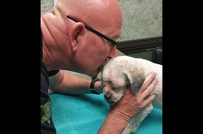 両目を失ったホームレスのシニア犬に待っていたのは明るい人生