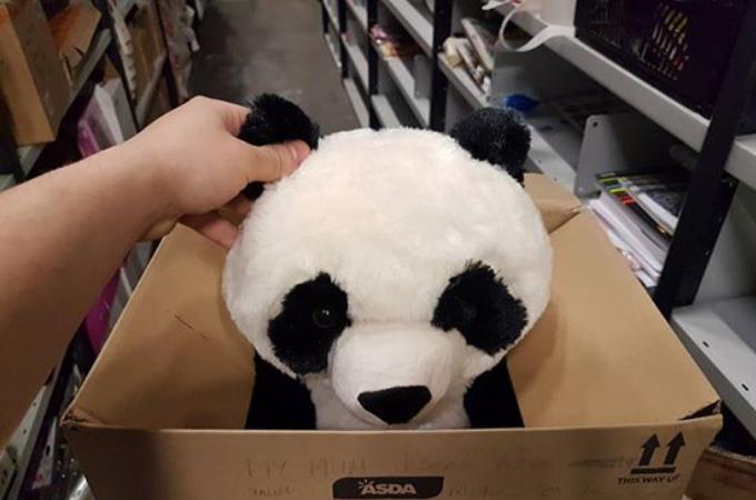 パンダのぬいぐるみに一目惚れした少年。そのぬいぐるみが買えない少年がとった行動に世界が胸キュン!