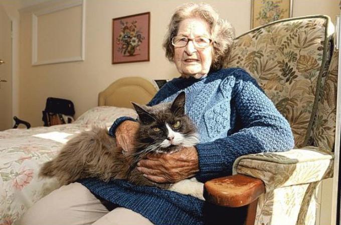 老人ホームに入る事となった飼い主と離れ離れになってしまった愛猫。しかし、あることが原因で再び一緒に暮らすことに!