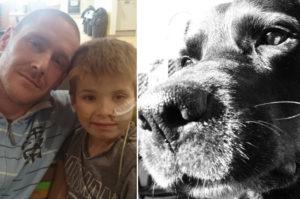 最愛の息子を亡くした男性に寄り添った1匹の愛犬。大切な人を失い、互いに寄り添い慰め合う。