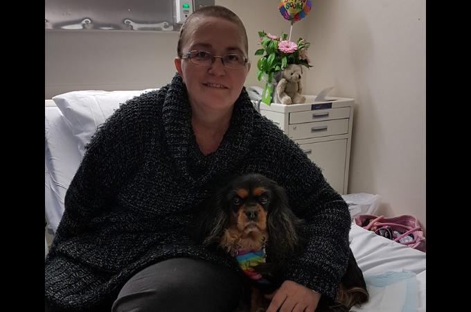 手術を終えた患者に寄り添い心を癒すセラピー犬。その結果、患者に大きな変化をもたらす。