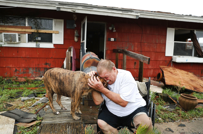 大洪水によって被災した動物たちの救出をする様子を捉えた写真28枚。