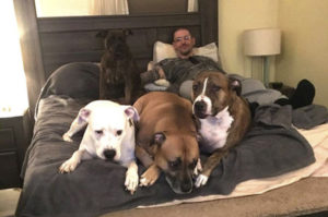飼い主が愛犬たちのために裏庭を改造。そして、数年後に出来上がった裏庭がDIYと呼べるレベルを遥かに超え、まさにホテル!