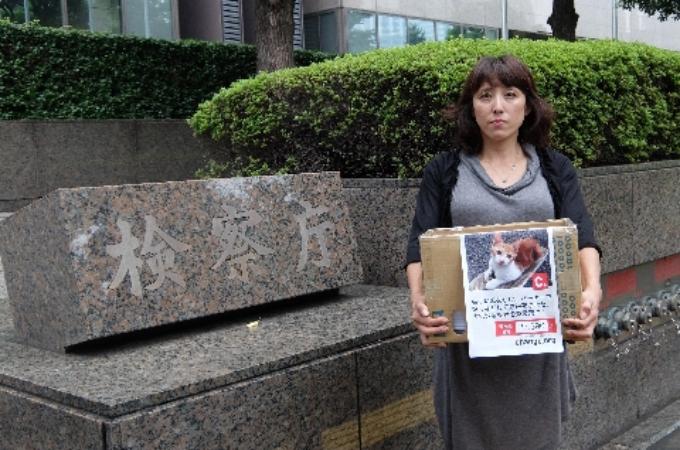 バーナーなどで猫をこれまでに13匹殺した税理士に「実刑」を求めるため著名を集めた女性。東京地検に3万7千筆の著名を提出。