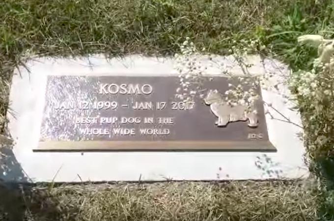 ペット霊園で、墓石に立つ1匹の犬を発見した投稿者。近づいて見ると、不思議な出来事に心打たれる。