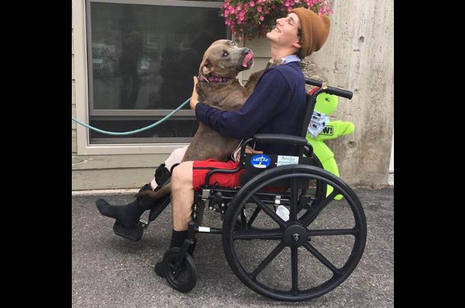 飲酒運転の事故に巻き込まれた男性と2匹の愛犬。1匹は亡くなりもう1匹は行方不明に。懸命な捜索の結果、数日後に再開を果たす。