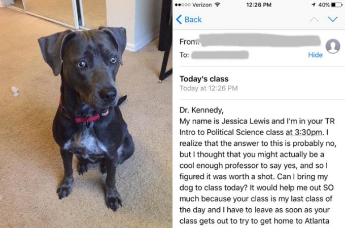 ハリケーンにの影響で、愛犬を連れて受講を受けたいと願い出た学生に対し、教授が返したメールの返答が素敵すぎる!