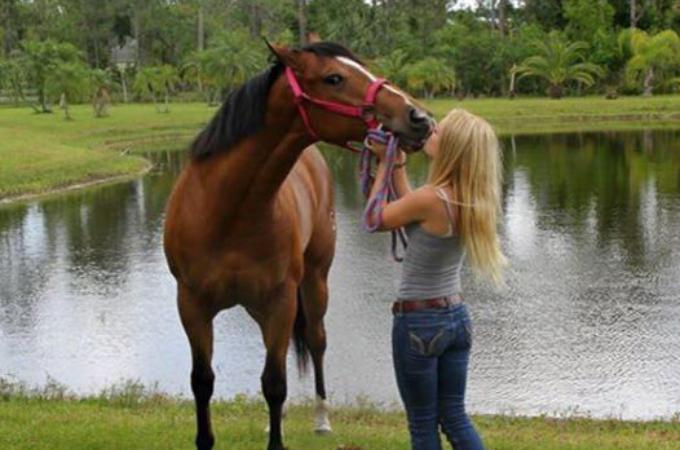 ハリケーンが来るのに備えて、馬を家の中に避難させた数日後に起きた悲劇とは!