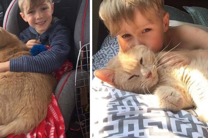 「動物保護施設から動物を引き取って飼おう」と決めた家族。そして少年が選んだ猫とその後の生活に心が和む。
