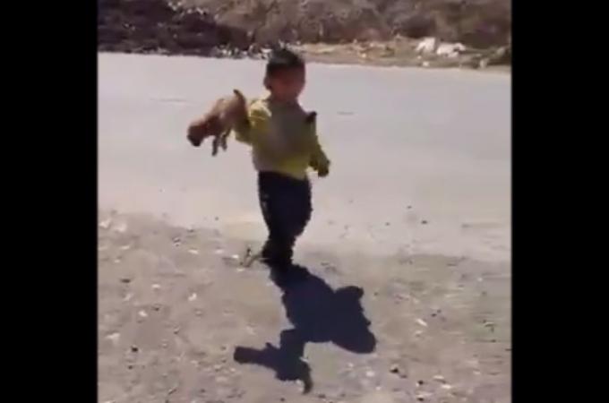 中国人の子供が子犬を虐待する様子を撮影。そのあまりに酷い行動に胸が苦しくなる。