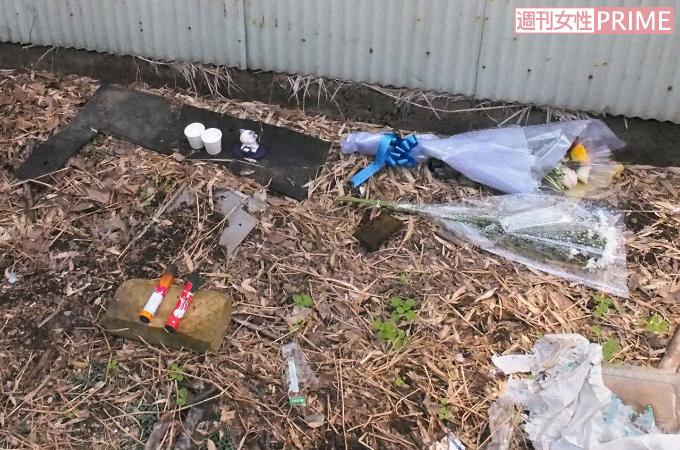 <埼玉・深谷市>猫虐待殺傷の一部始終を動画撮影した、鬼畜男の正体