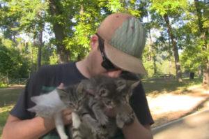 森に捨てられていた4匹の子猫を保護した夫婦。保護する一部始終の様子と、その後の生活がこちら。