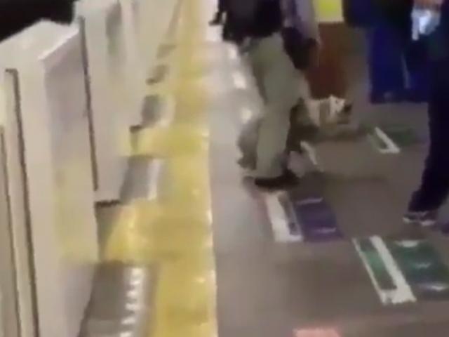 駅のホームで飼い主を支える盲導犬。その盲導犬を蹴る視聴障害者の動画に多くの人が心を痛める。