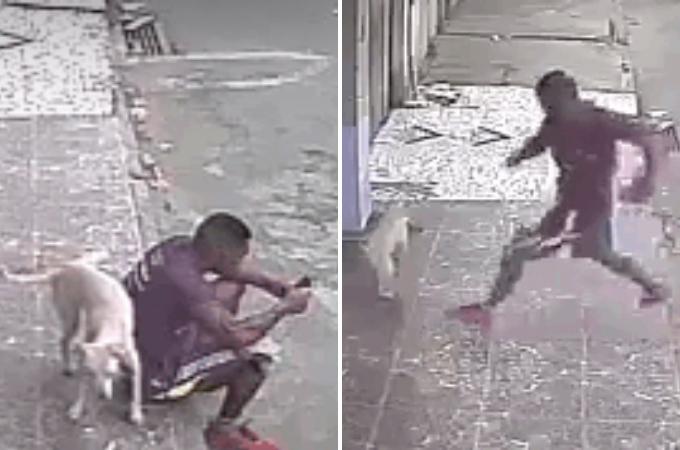 消火栓と間違われ犬におしっこをかけられ激怒し、犬を蹴ろうとし批難された男性。しかし、その話には続きがあった。