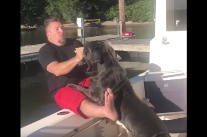 「おいで!」おやつをもらうために飼い主さんの胸に飛び込んだ愛犬。たくましい愛犬によって水の中に突き落とされる!